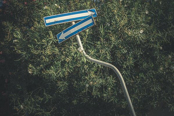 Blog image with a sign post pointing in two different directions on a bed of grass